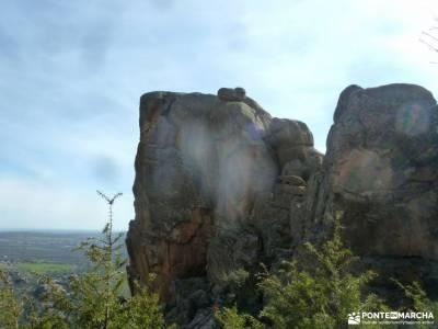 Gran Cañada-Cerro de la Camorza; excursion de un dia senderismo por soria sierras de albacete parque